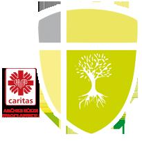 Katolicka Szkoła Podstawowa Caritas w Kotowicach